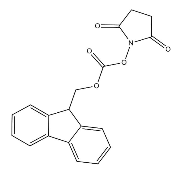 peptide structure.png