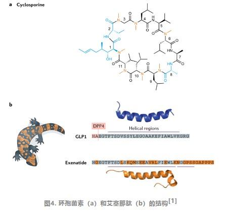 肽类药的研发进度,你知道吗?