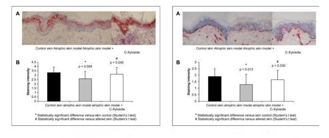 生物学家有关十肽-12decapeptide-12对肌肤调亮系统的科学研究评定