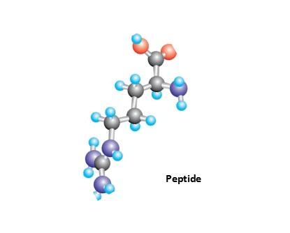 护肤产品中您不清楚的肽,带你了解一下!